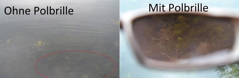 Polarisationseffekt: Links ohne Polbrille; rechts mit Polbrille